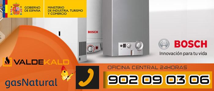 Calentador Bosch Therm 6000i S a gas